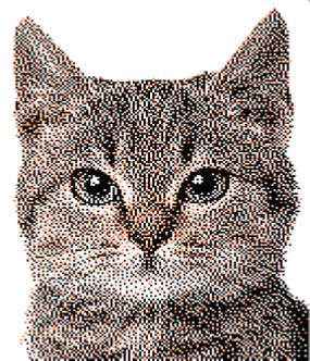 Programa mezgimui DesignaKnit9_20
