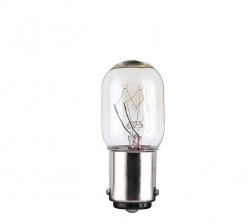 Lemputė įstatoma