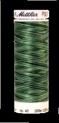Melanžiniai siuvinėjimo siūlai Mettler Poly Sheen Multi (spalva 9805)