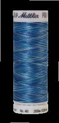 Melanžiniai siuvinėjimo siūlai Mettler Poly Sheen Multi (spalva 9605)