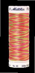 Melanžiniai siuvinėjimo siūlai Mettler Poly Sheen Multi (spalva 9914)