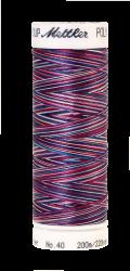 Melanžiniai siuvinėjimo siūlai Mettler Poly Sheen Multi (spalva 9918)