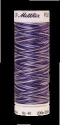 Melanžiniai siuvinėjimo siūlai Mettler Poly Sheen Multi (spalva 9921)