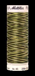 Siuvinėjimo siūlai Poly Sheen Multi (spalvų paletė viduje)
